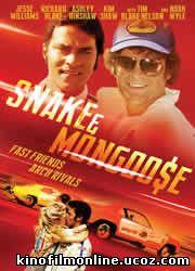 Змея и Мангуст